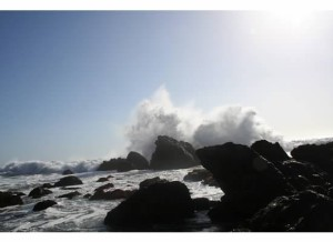 Bodega Bay CA Vacation Rental By Owner